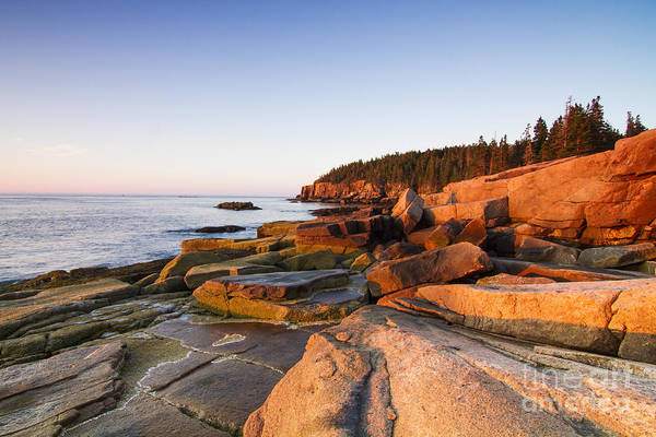 Acadia National Park Wall Art - Photograph - Marine Landscape In Acadia, Park Loop by Mircea Costina
