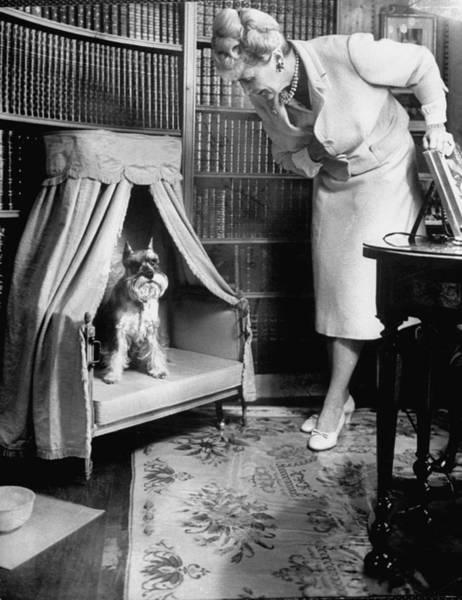 Schnauzer Photograph - Marjorie Merriweather Post by Alfred Eisenstaedt