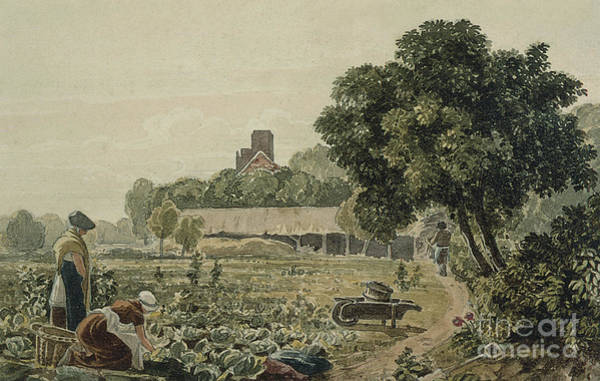 Wall Art - Painting - Market Garden At Chelsea by George the Younger Barret