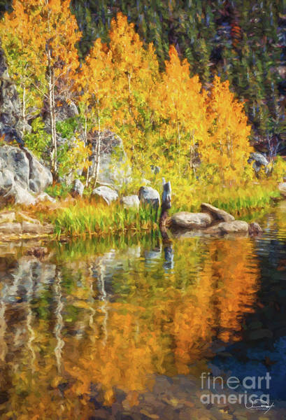 Wall Art - Photograph - Marlette Lake Fall Colors by Vance Fox