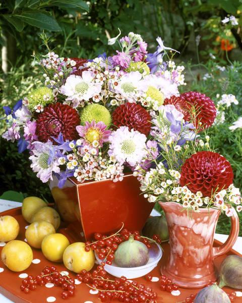 Freshness Photograph - Maroon Dahlia, Scabious, Chrysanthemum by Linda Burgess