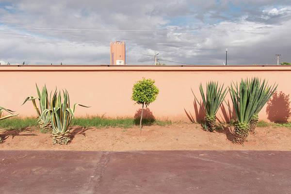Photograph - Marrakech 1 by Stuart Allen