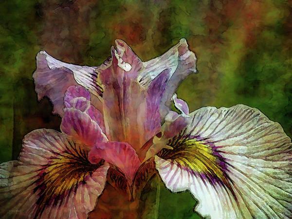 Photograph - Marsh Iris 1784 Idp_2 by Steven Ward