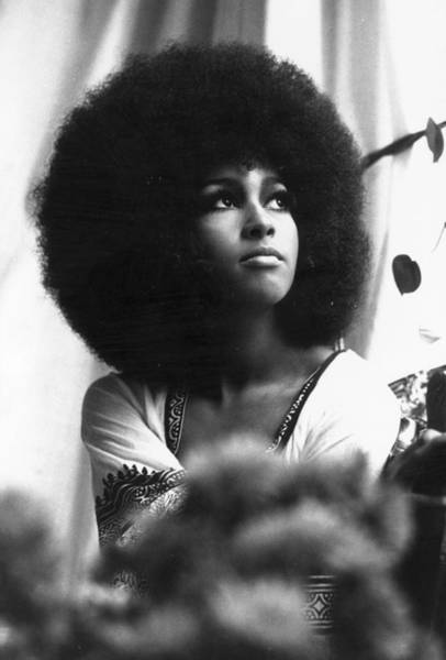 Hairstyle Photograph - Marsha Hunt by Evening Standard