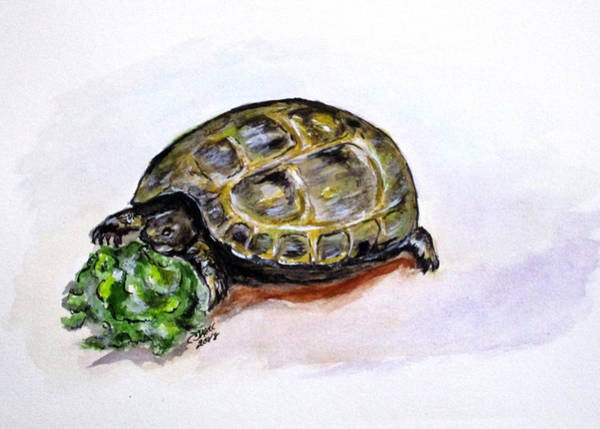 Painting - Marshal The Turtle by Clyde J Kell