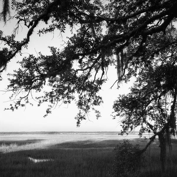 Photograph - Marshes St Marys, Ga by Rudy Umans