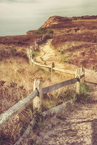 Wall Art - Photograph - Martha's Vineyard Dunes by Joann Vitali