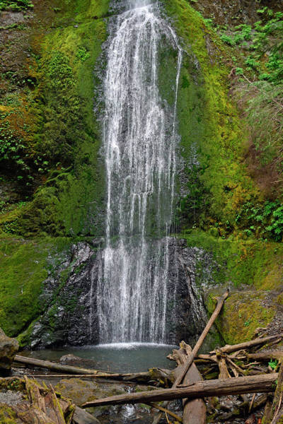 Photograph - Marymere Falls Olympic National Park by Bruce Gourley