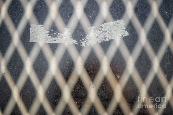 Photograph - Masked by Natural Abstract Photography