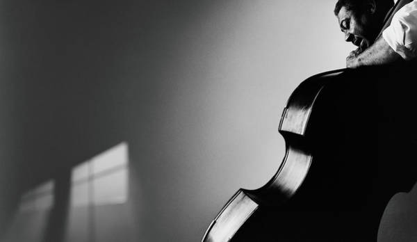 Adult Male Photograph - Mature Man Playing Upright Bass, High by Todd Pearson