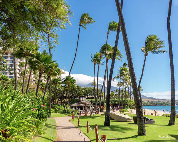 Photograph - Maui Beachfront by Tim Kathka