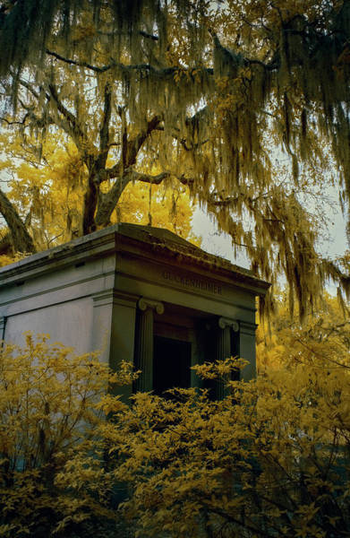 Photograph - Mausoleum In Georgia  by Jon Glaser