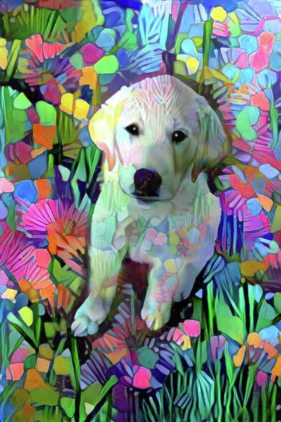 Digital Art - Max In The Garden by Peggy Collins