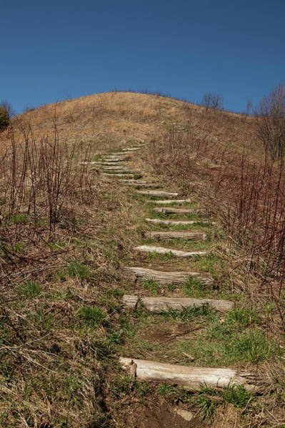 Wall Art - Photograph - Max Patch, Appalachian Trail, North by Jerry Whaley