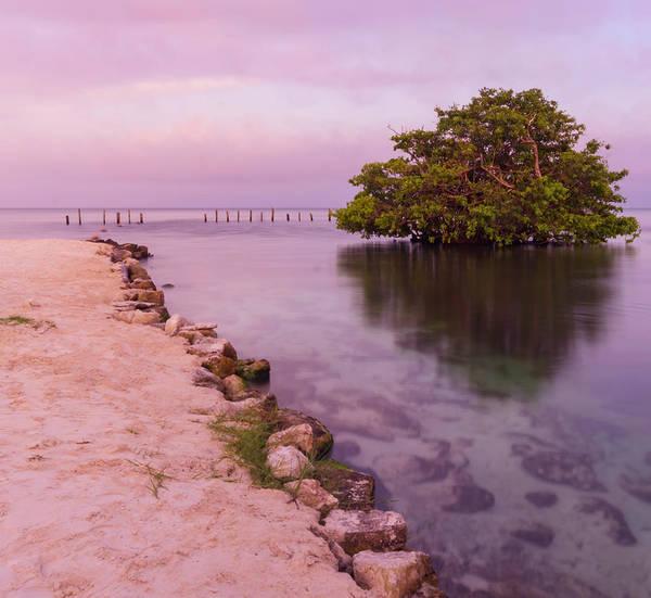 Mayan Sea Reflection 2 Art Print