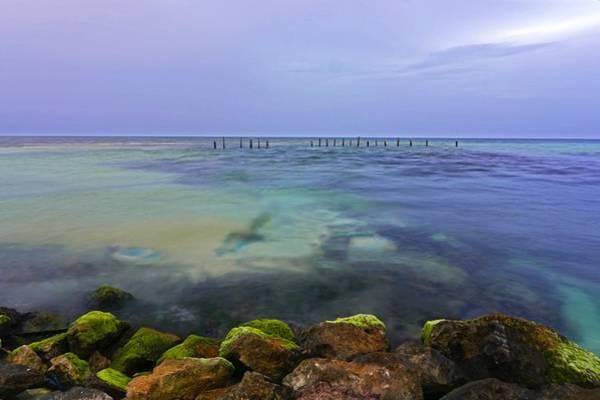 Photograph - Mayan Sea Rocks by Silvia Marcoschamer