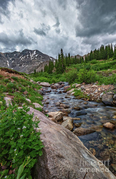 Photograph -  Mayflower Creek by Bitter Buffalo Photography