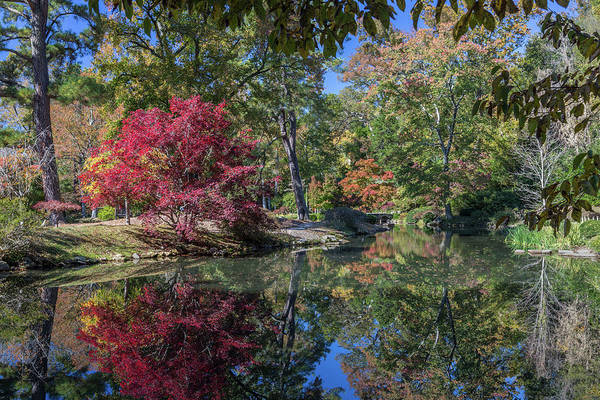 Photograph - Maymont Japanese Garden Pond by Jemmy Archer