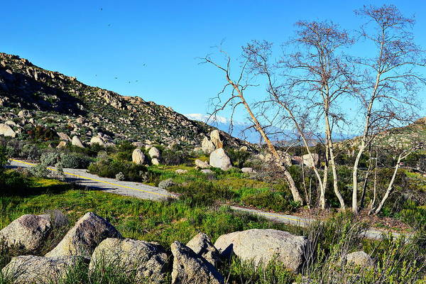 Wall Art - Photograph - Maze Stone Road by Glenn McCarthy Art and Photography