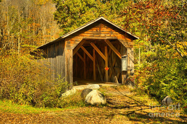 Photograph - Mcdermott Coverd Bridge In The Woods by Adam Jewell