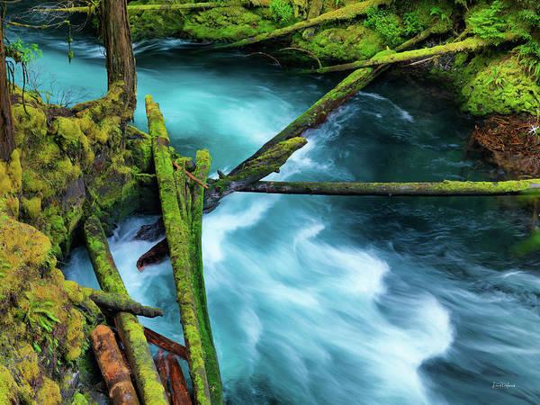 Willamette Photograph - Mckenzie River Color by Leland D Howard