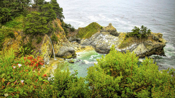 Photograph - Mcway Falls Big Sur 2 by Floyd Snyder