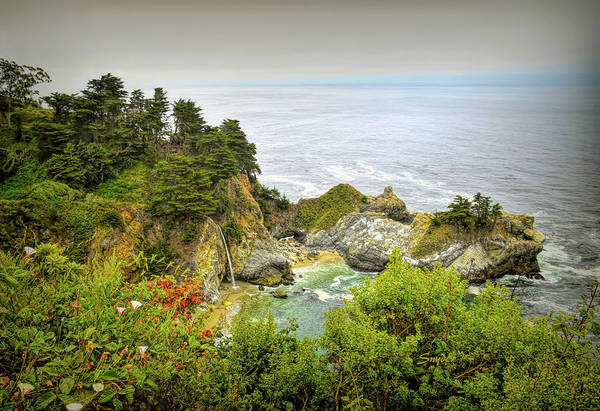 Photograph - Mcway Falls Big Sur  by Floyd Snyder