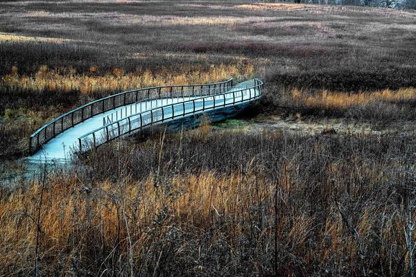 Photograph - Meadow Bridge by Tom Singleton