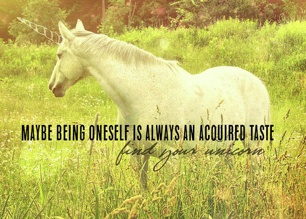 Photograph - Meadow Gray Quote by Dressage Design