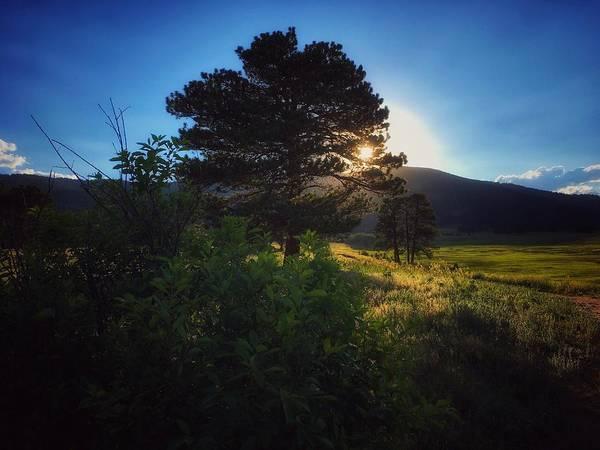 Photograph - Meadow Twilight by Dan Miller