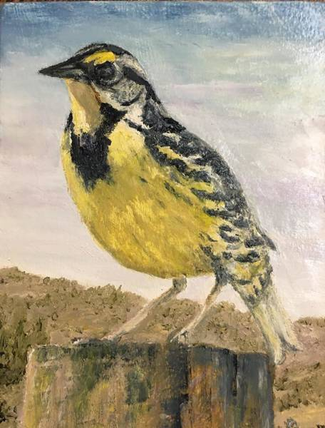 Meadowlark Painting - Meadowlark by Sharon Karlson