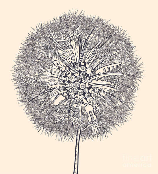 Seed Head Wall Art - Digital Art - Mechanical Dandelion by Ryger
