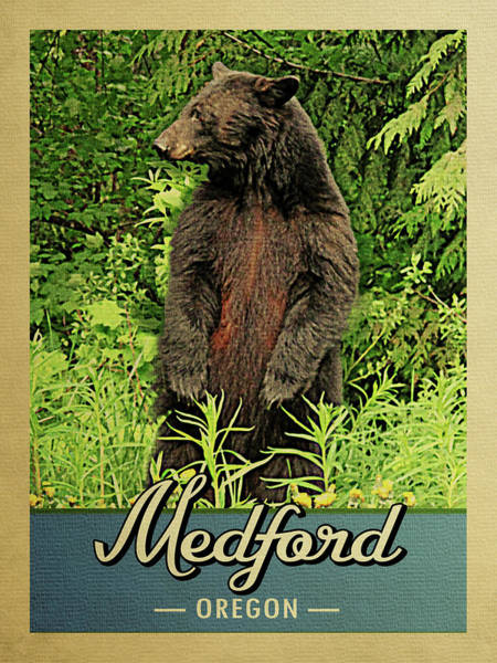 Oregon Wildlife Wall Art - Digital Art - Medford Oregon Vintage Bear by Flo Karp