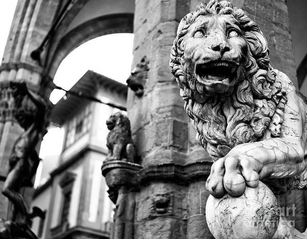 Photograph - Medici Lion At The Loggia Dei Lanzi In Florence by John Rizzuto