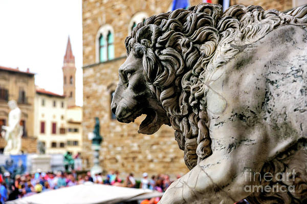Photograph - Medici Lion In Florence by John Rizzuto