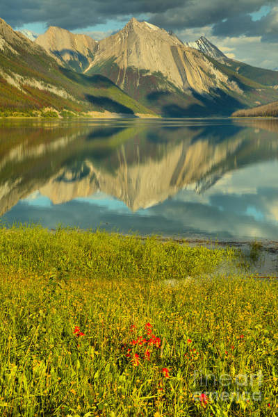 Photograph - Medicine Lake Reflections And Wildflowers Portrait by Adam Jewell