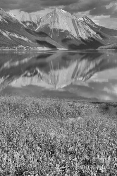Photograph - Medicine Lake Reflections And Wildflowers Portrait Black And White by Adam Jewell
