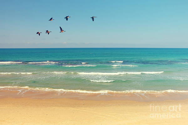 Mediterranean Sea And Sand Beach Art Print