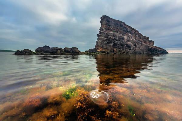 Photograph - Medusa by Evgeni Dinev