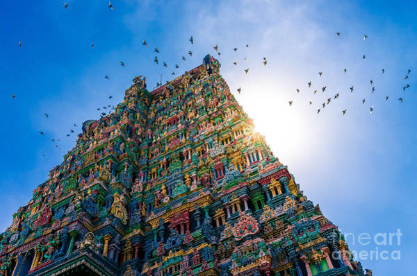Wall Art - Photograph - Meenakshi Hindu Temple In Madurai by Val Shevchenko
