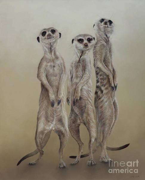 Wall Art - Painting - Meerkat Mob, Sun Angels by Odile Kidd
