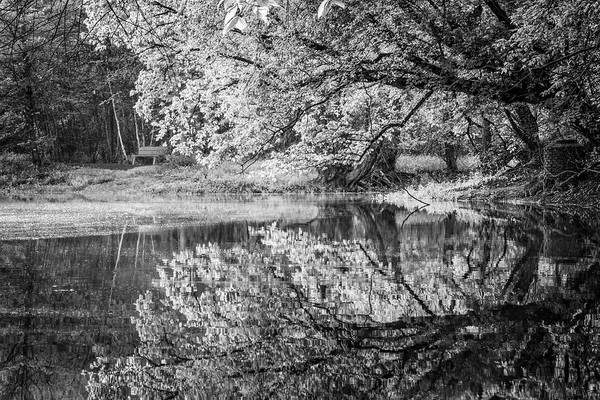 Photograph - Meet Me At The Lake Black And White by Debra and Dave Vanderlaan
