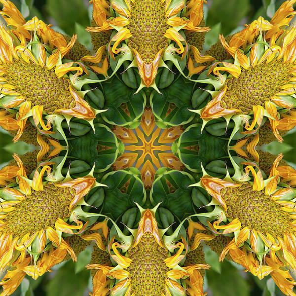 Hidden Treasures Digital Art - Meet Me In The Garden by Becky Titus