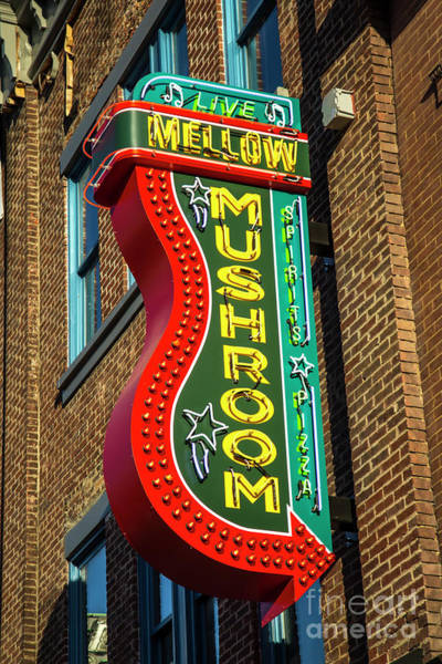 Wall Art - Photograph - Mellow Mushroom Broadway Neon Signage Nashville Tennessee Art by Reid Callaway