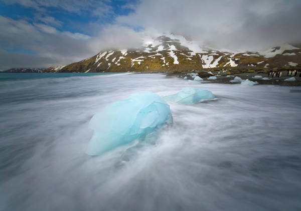 Wall Art - Photograph - Melting Chunks Of Glacial Ice On Beach by Eastcott Momatiuk