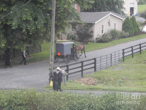 Photograph - Members Of An Amish Church by Christine Clark