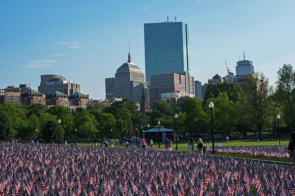 Photograph - Memorial Day On The Boston Common Flags by Toby McGuire