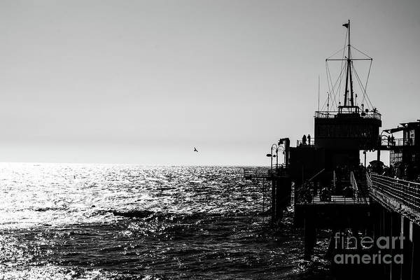 Photograph - Memories Of The Santa Monica Pier by Matthew Nelson