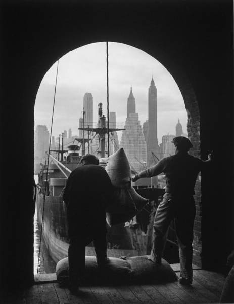 Photograph - Men Unloading Coffee At Brooklyn Dock by Andreas Feininger