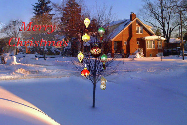 Photograph - Merry Christmas Jewel Tree by Marvin Bowser